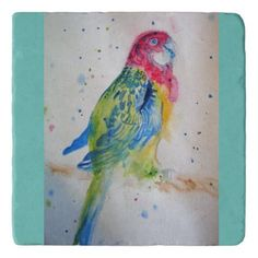 Rosella Parrot bird art Watercolor Stone Trivet Watercolor Birthday Cards, Parrot Bird, Tropical Birds, Watercolor Bird, Photo Craft, Plant Design, Brighten Your Day, Custom Greeting Cards, Bird Art