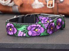 Roses in purple / Rosas en morado