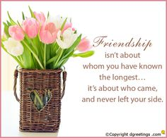 Share this bright and lovely friendship cards with your friends and family.