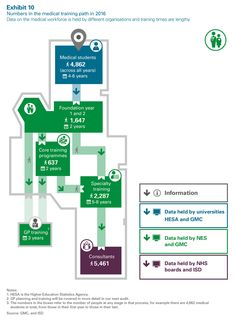 Numbers in the medical training path 2016 Train Information, Medical Students, Training Programs, Portfolio Design, 6 Years, Bar Chart, Scotland, Hold On, Infographic