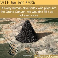 Hmm! ...7 Billion+ People? WTF Facts : funny, interesting & weird facts