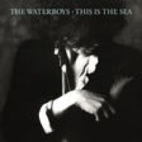 ‎This Is the Sea (Deluxe Version) by The Waterboys on Apple Music Lp Vinyl, Vinyl Records, Electric Music, Country Dance, Lp Cover, Best Albums, Music Library, Best Rock, Post Punk