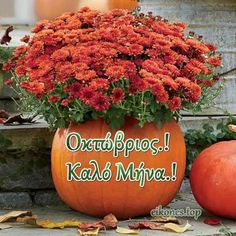 Morning Coffee Images, Mina, Greek Quotes, Pumpkin, Plants, Decoration, Pictures, Wedding Breakfast Images, Decor