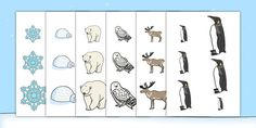 Polar Regions Size Ordering - EYFS, Early Years, North Pole, South Pole, polar…