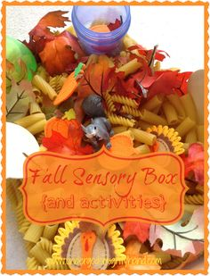 Fall Sensory Box and activities
