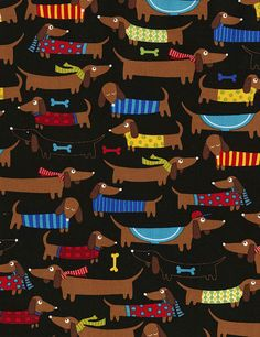 Dachshunds Fabric by Timeless Treasures at TCSFabrics.com #Fabric #QuiltingFabric #CottonFabric #Sewing #Quilt #Dachshund #WienerDog #DogFabric