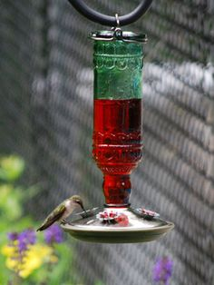 hummingbird feeders. We have 2 of these feeders. They work great -- no messy leaking. The hummingbirds love them. Got them at Wal-mart for about $15.  Easy to fill also.