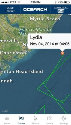 16 Foot Great White Shark Tracked Along The East Coast