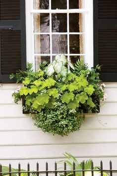 Brighten a Shady Spot | Enjoy nonstop color all season long with these container gardening ideas and plant suggestions. You'll find beautiful pots to adorn porches and patios. You may not have the space or patience to become a master gardener, but anyone can master container gardening. It's a cinch—all you need is a container (a planter in true gardener speak), potting soil, some plants and you're ready to go. Thinking of container gardening like this, it's easy to see why container…