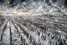 Anselm Kiefer  reminds me of rides through the corn fields