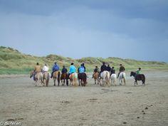 Ein ganz besonderes Erlebnis! In Dänemark können Pferd und Reiter gemeinsam die Natur entdecken und erleben #Dänemark #Pferde #Strand #Dünen #Reiten