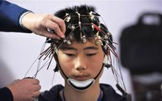 Scientists Discover How To upload knowledge to your brain