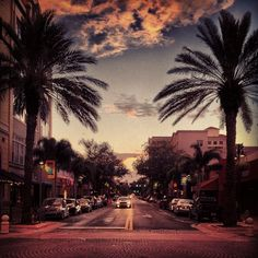 Clematis Street in West Palm Beach, FL is home to bars, nightclubs, gourmet restaurants, and events.