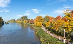 Fall for Eugene ... a cycle path by the Willamette river.