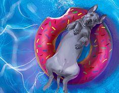 #art #pool #dog #digitalart #illustration