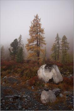 Arsentia — «Туман в горах» на Яндекс.Фотках