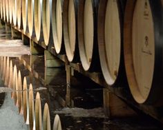 Off-the-beaten track wine tour in the Southern Rhone Valley