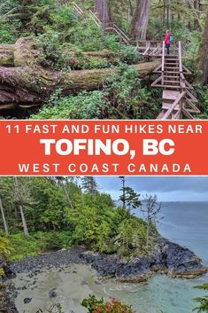 Short on time but want to experience the magic of Vancouver Island's West Coast? Here are 11 fast and fun Tofino hikes which showcase this beautiful area Cool Places To Visit, Places To Travel, Places To Go, Travel Diys, Budget Travel, Travel Destinations, Vancouver Travel, Vancouver Island, West Coast Canada