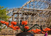 The Monster - Cedar Point