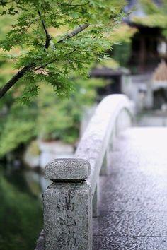 Colors ~ Green and Gray Shades Of Green, Green And Grey, Gray, Japanese Princess, Japanese Girl, Memoirs Of A Geisha, Garden Stones, Bokeh, Garden Inspiration