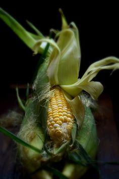Just corn ...