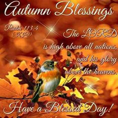 Good Morning Everyone, Happy Wednesday. I pray that you have a safe and blessed day! Monday Blessings, Morning Blessings, Thanksgiving Blessings, Sunday Quotes, Morning Quotes, November Quotes, Fall Quotes, First Day Of Autumn, Encouragement