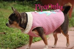 ropa perros pipa only
