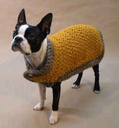 Eccentric Christmas Presents For Your Pets The warm dog coat from Beantown Handmade dog clothing – Odd Stuff Magazine