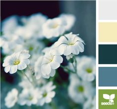 Design Seeds® | for all who ❤ color | spring tones