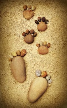 "Man's best friend...""Natural"" by Iain Blake, via Flickr #pawprints #dogs #stones"