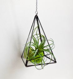 Pyramid Terrarium. Hanging Terrarium. Stained Glass Geometric Plant Holder. Glass Terrarium. Plant holder With chain.