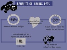 benefits of having pets at home essay