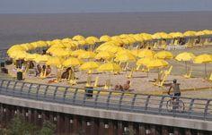 Yellow umbrellas in Argentina