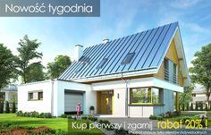 Projekt domu Viking 2 - wizualizacja frontu