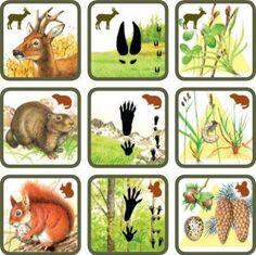 * Natuurspel! Zoek het dier bij zijn sporen en voedsel! 6-6