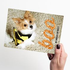 We've been stung with #Halloween cuteness—thanks to this dog. #HappyHalloween