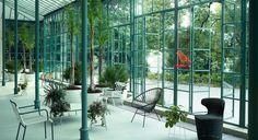 Jardin d'hiver, ambiance botanique et vert émeraude...