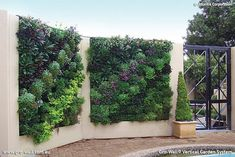 Vertical Garden Design Ideas - Get Inspired by photos of Vertical Gardens from Australian Designers & Trade ProfessionalsVertical Garden Design Ideas - Get Inspired by photos of Vertical Gardens from Australian Designers & Trade Professionals - Australia | hipages.com.au