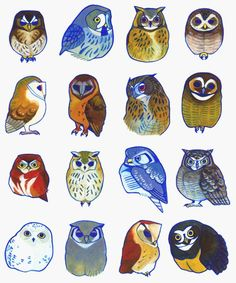 Watercolour Owls