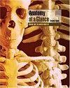 Anatomy at a glance [recurs electrònic] / Omar Faiz, David Moffat. Nursing Process, Nursing Care Plan, Nursing Diagnosis, Science Student, At A Glance, Pharmacology, Ebook Pdf, Free Ebooks, Textbook