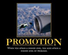 Promotion... But, You can Handle it! That's why you're here!