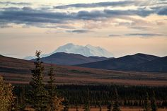 Denali from Stampede Trail (by CB in AK, via Flickr)