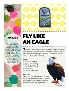 Councils Own Fly Like An Eagle Girl Scouts Of Eastern Iowa And Western Illinois