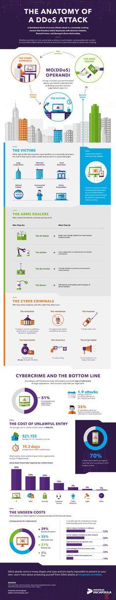 infografica-ddos-res