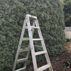 Before and after hedge tidy up and mulch. . . #jewelllandscaping #hobart #tasmania #landscaping #landscaper #gardening #gardener #gardeners #tidyup