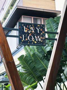 The Laylow – Hawaii – Happy Mundane Places Around The World, Around The Worlds, Aloha Friday, Hawaii Travel, Store Design, Signage, Beautiful Places, Design Inspiration, Adventure