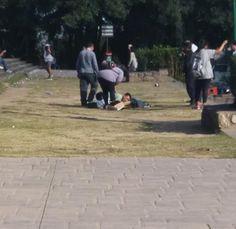 Ocurrió en Salta. El perro falleció estudiantes de secundaria tiraban fuegos artificiales en el monumento a Gemes. Mientras el perro se desangraba en el suelo, su dueño se arrojó encima y lloró desesperadamente.
