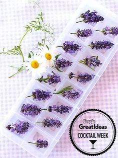 The Latest Craze in Disco Styles Is See-Through Jeans—but Beware of Foggy Bottoms LAVENDER A lavender-flower ice cube not only makes a colorful addition to water or iced tea, but also brings out the flavor of gin and bourb… Lavender Tea, Lavender Flowers, Lavender Cocktail, Ice Cube Recipe, Flower Ice Cubes, Colored Ice Cubes, Flavored Ice Cubes, Le Gin, Healthy Smoothie