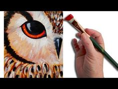 (3) Simple Owl EYE Beginner Acrylic Painting Lesson The Art Sherpa - YouTube