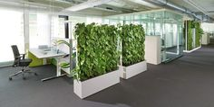 plants to keep the air clean - Biophilic Design: A Marriage of Functional Design and Nature -  #biophilicdesign #natureinspired #nature-inspireddecorating